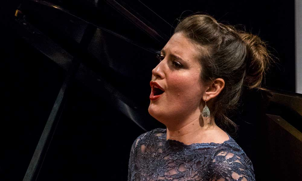 SongFest: A Journey through Schubert Lieder