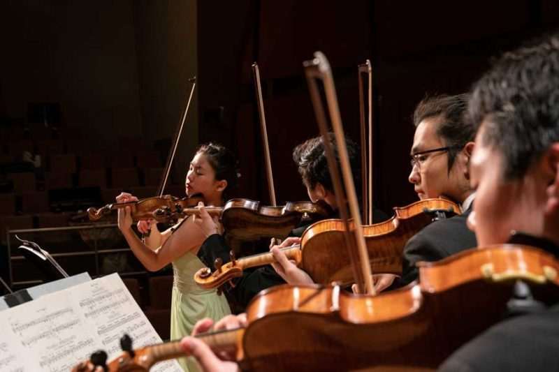 A row of violinists performing.