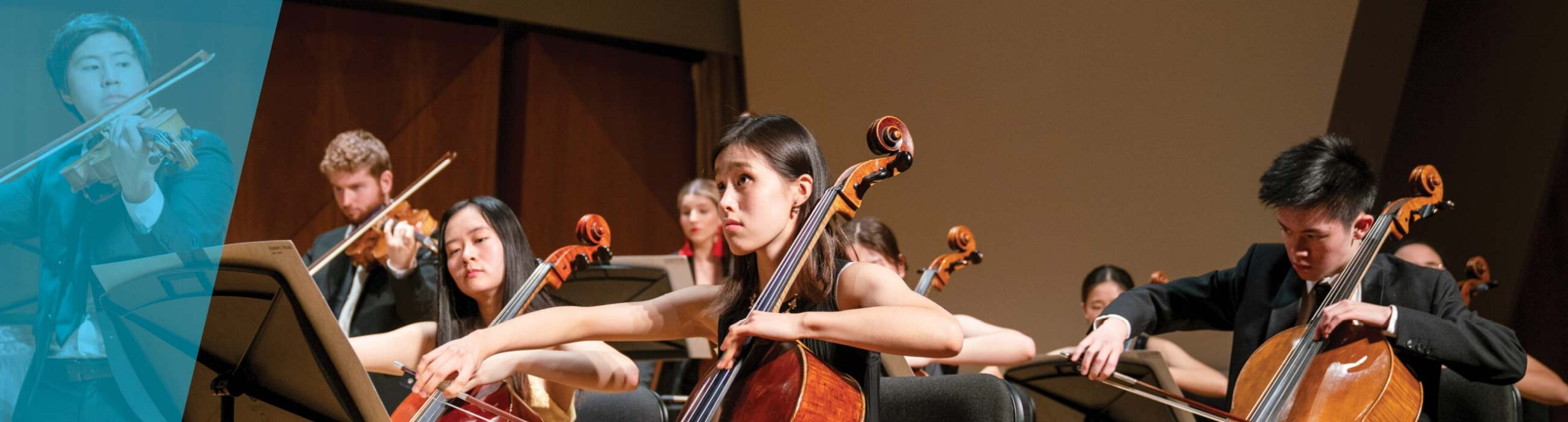 Cellists in chamber orchestra performing on stage