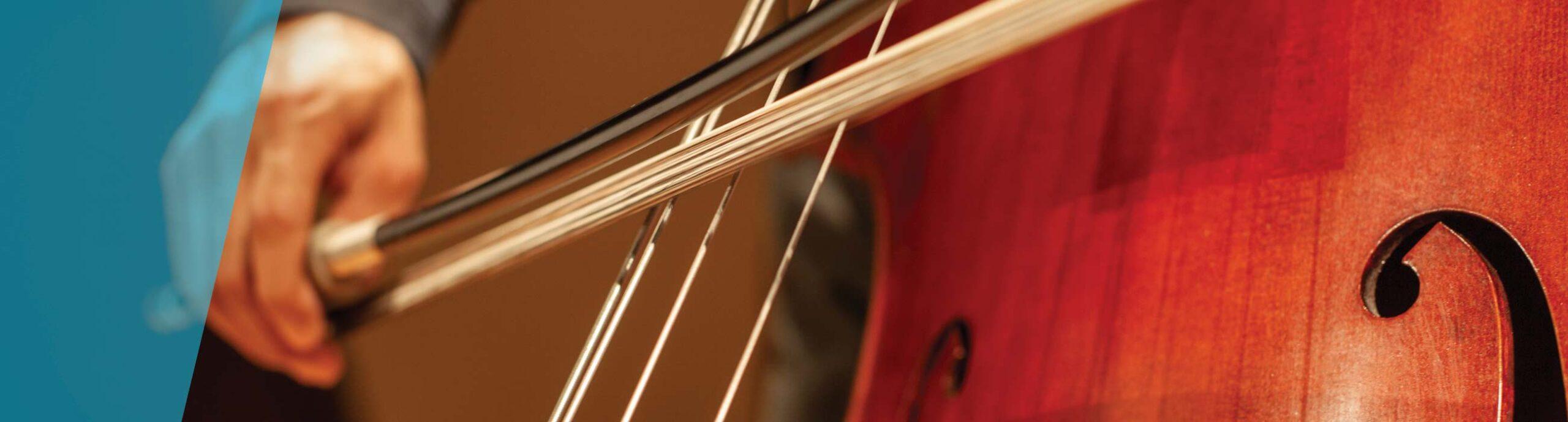 Close up photo of cello
